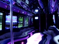 22 passenger luxury party limo-bus