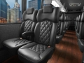 Luxury 24-28 passenger Executive Minibus, Mini-Coach buses