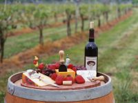 Virginia Wine tour by large & small charter bus, minibus, van & stretch limo